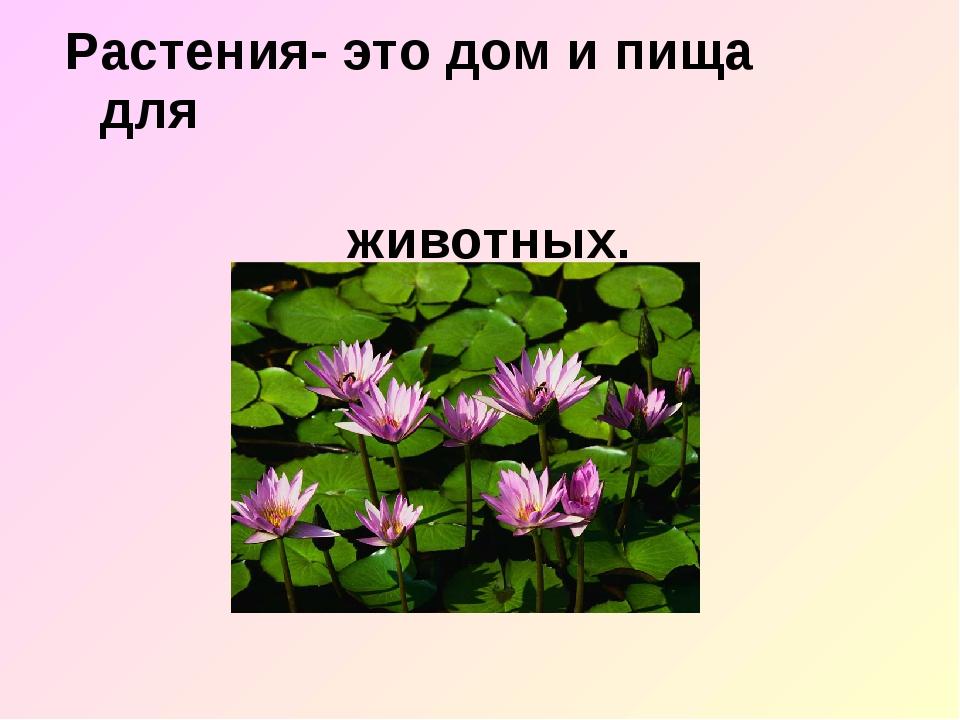 Растения- это дом и пища для животных.