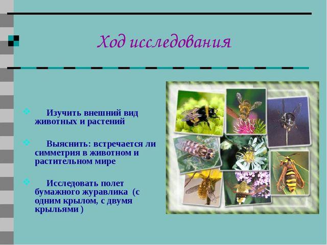 Ход исследования Изучить внешний вид животных и растений Выяснить: встречаетс...