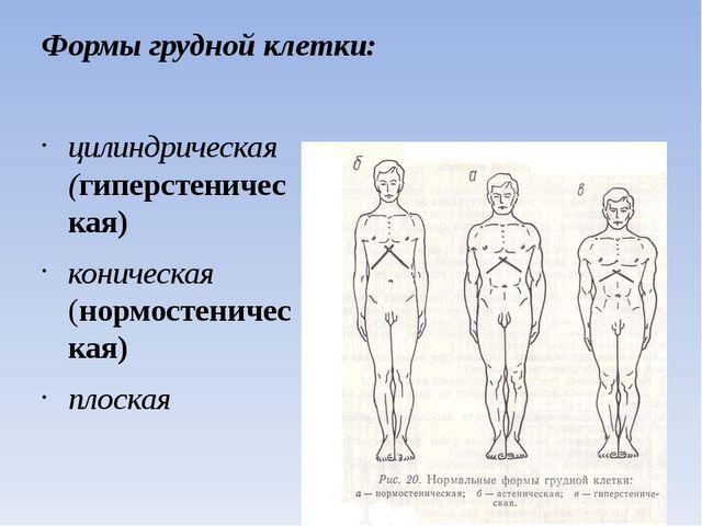 Формы грудной клетки: цилиндрическая (гиперстеническая) коническая (нормостен...