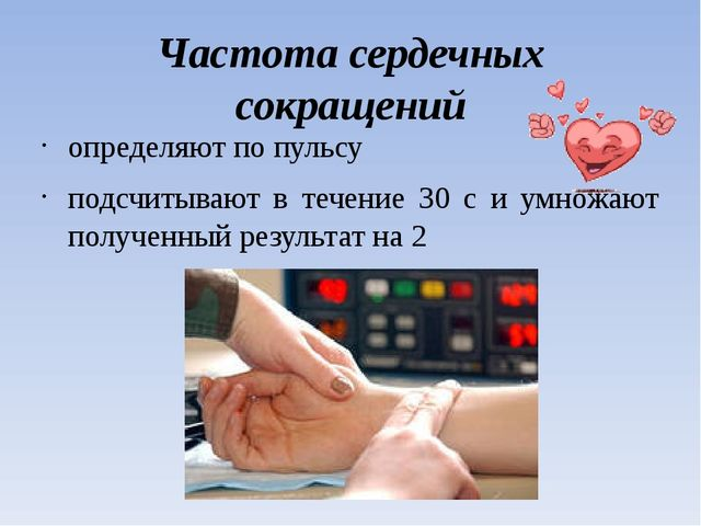 Частота сердечных сокращений определяют по пульсу подсчитывают в течение 30 с...