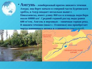 Амгунь - левобережный приток нижнего течения Амура; она берет начало в северн