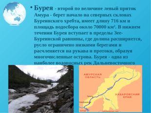 Бурея - второй по величине левый приток Амура - берет начало на северных скло