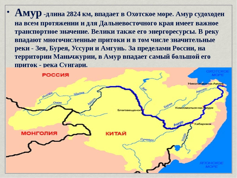 Амур -длина 2824 км, впадает в Охотское море. Амур судоходен на всем протяжен...