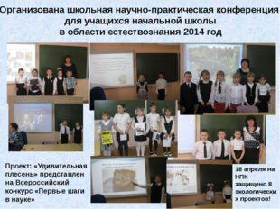 Организована школьная научно-практическая конференция для учащихся начальной