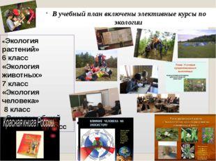 «Экология растений» 6 класс «Экология животных» 7 класс «Экология человека» 8