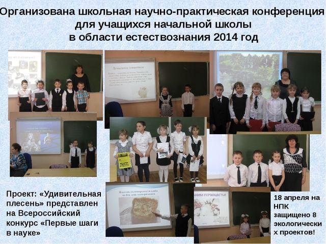 Организована школьная научно-практическая конференция для учащихся начальной...