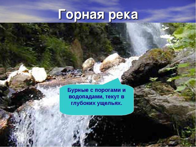 Горная река Бурные с порогами и водопадами, текут в глубоких ущельях.