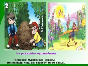 Не разоряйте муравейники Не разоряй муравейник - муравьи – это санитары леса