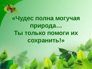 «Чудес полна могучая природа… Ты только помоги их сохранить!»