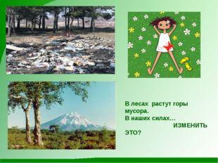 В лесах растут горы мусора. В наших силах… ИЗМЕНИТЬ ЭТО?