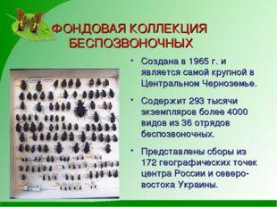 ФОНДОВАЯ КОЛЛЕКЦИЯ БЕСПОЗВОНОЧНЫХ Создана в 1965 г. и является самой крупной