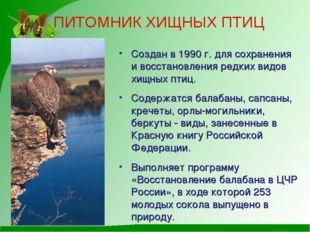 ПИТОМНИК ХИЩНЫХ ПТИЦ Создан в 1990 г. для сохранения и восстановления редких