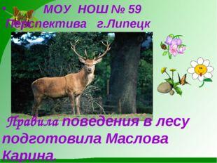 МОУ НОШ № 59 Перспектива г.Липецк Правила поведения в лесу подготовила Масло