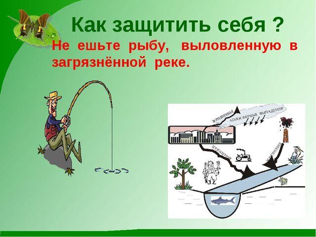 Как защитить себя ? Не ешьте рыбу, выловленную в загрязнённой реке.