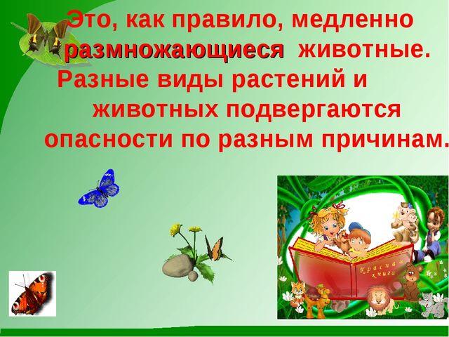 Это, как правило, медленно размножающиеся животные. Разные виды растений и жи...