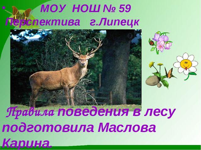 МОУ НОШ № 59 Перспектива г.Липецк Правила поведения в лесу подготовила Масло...