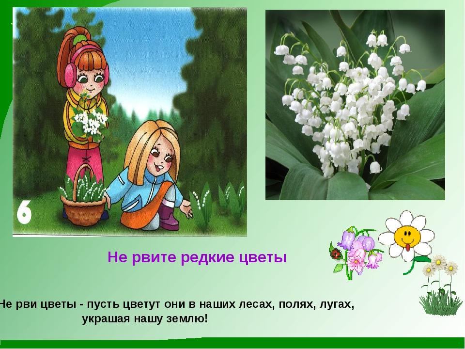 Не рвите редкие цветы Не рви цветы - пусть цветут они в наших лесах, полях,...