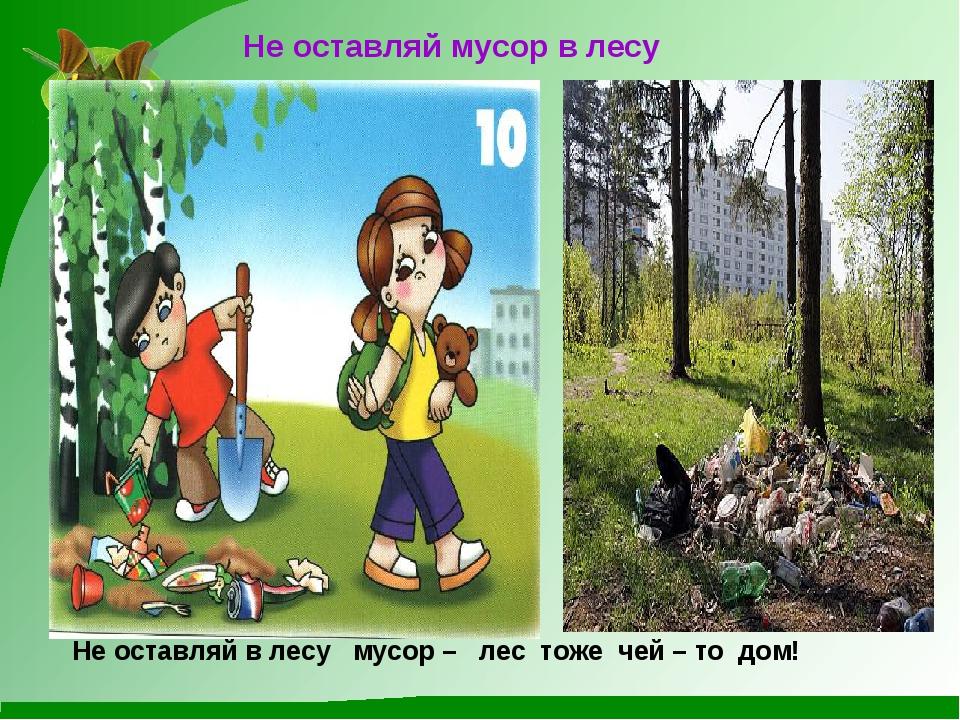 Не оставляй мусор в лесу Не оставляй в лесу мусор – лес тоже чей – то дом!