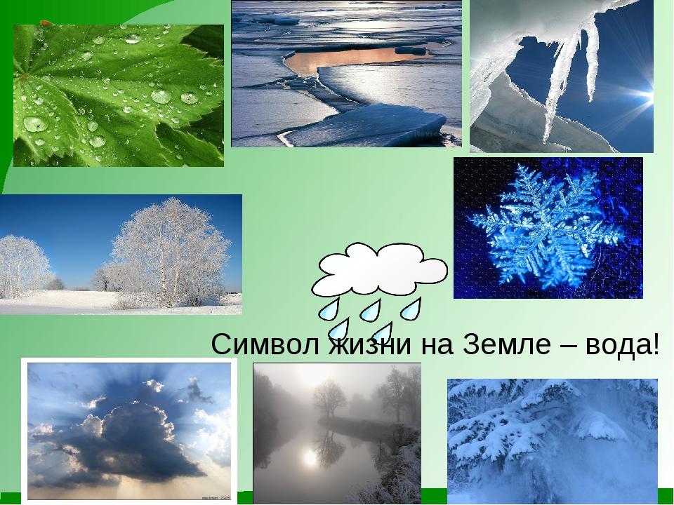Символ жизни на Земле – вода!