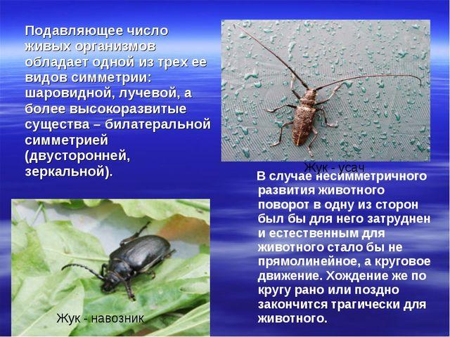 Подавляющее число живых организмов обладает одной из трех ее видов симметрии:...