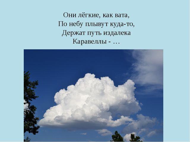 Они лёгкие, как вата, По небу плывут куда-то, Держат путь издалека Каравеллы...