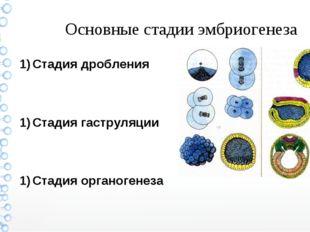 Основные стадии эмбриогенеза Стадия дробления Стадия гаструляции Стадия ор