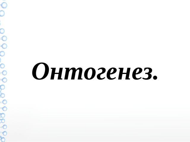 Онтогенез.