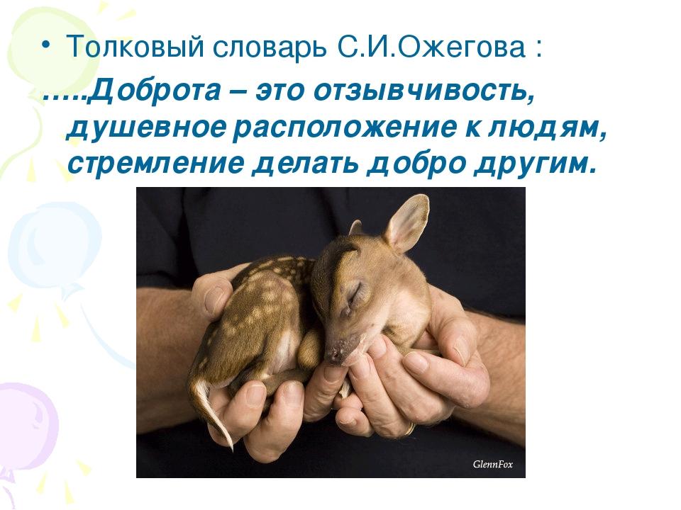 Толковый словарь С.И.Ожегова : …..Доброта – это отзывчивость, душевное распол...