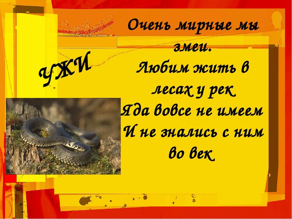 Очень мирные мы змеи. Любим жить в лесах у рек Яда вовсе не имеем И не зналис...