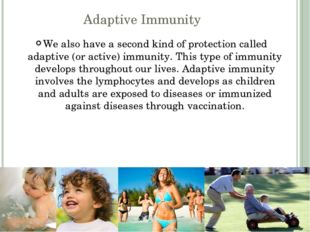 Adaptive Immunity We also have a second kind of protection called adaptive (o