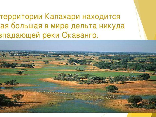 На территории Калахари находится самая большая в мире дельта никуда не впадаю...