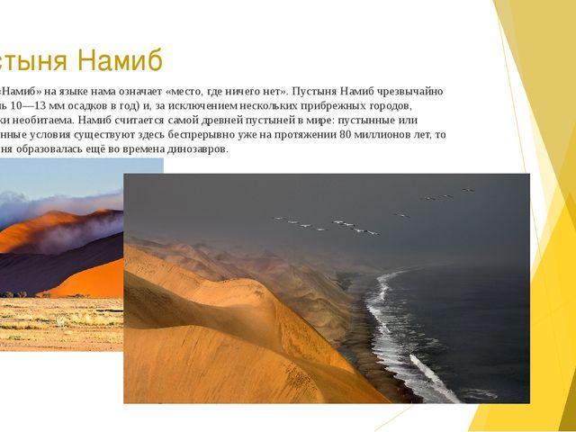 Пустыня Намиб Название «Намиб» на языкенамаозначает «место, где ничего нет»...