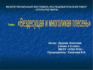 Автор: Дудник Анатолий ученик 4 А класс МБОУ «СОШ №24» Руководитель: Калачева