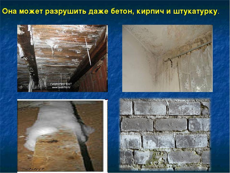 Она может разрушить даже бетон, кирпич и штукатурку.