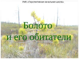 Болото и его обитатели УМК «Перспективная начальная школа»