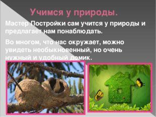 Учимся у природы. Мастер Постройки сам учится у природы и предлагает нам пона