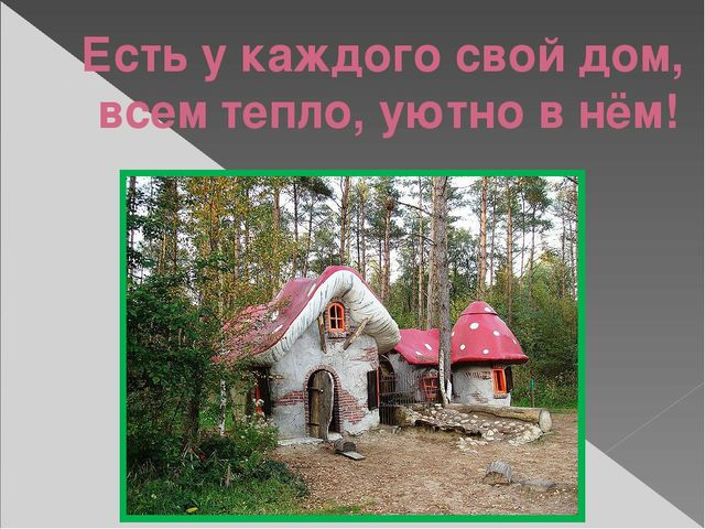 Есть у каждого свой дом, всем тепло, уютно в нём!