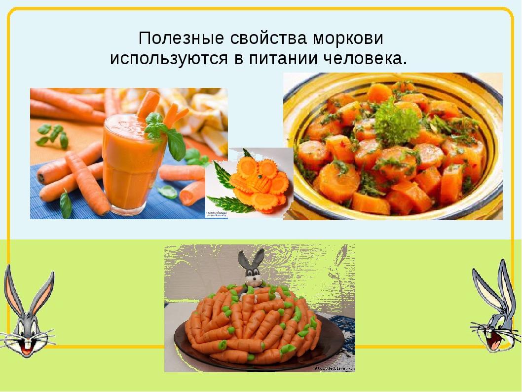 Полезные свойства моркови используются в питании человека.