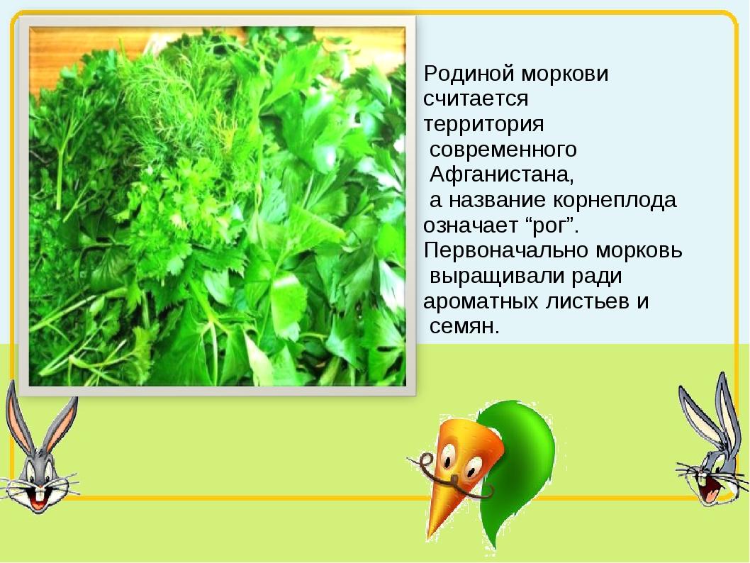 Родиной моркови считается территория современного Афганистана, а название кор...
