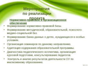 Мероприятия по реализации проекта Нормативно-правовое и организационное обесп