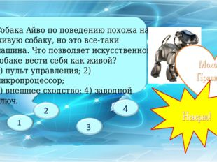 Собака Айво по поведению похожа на живую собаку, но это все-таки машина. Что