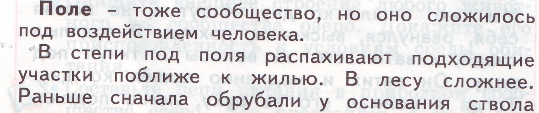 hello_html_m8b2182b.jpg