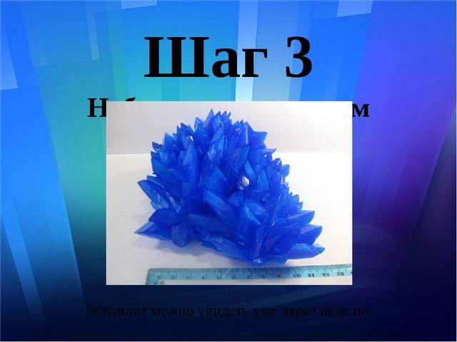 Шаг 3 Наблюдение за ростом кристалла Результат можно увидеть уже через неделю!