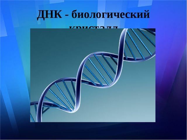 ДНК - биологический кристалл