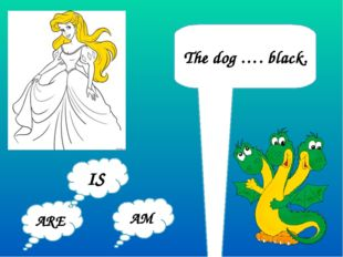 The dog …. black. ARE AM IS