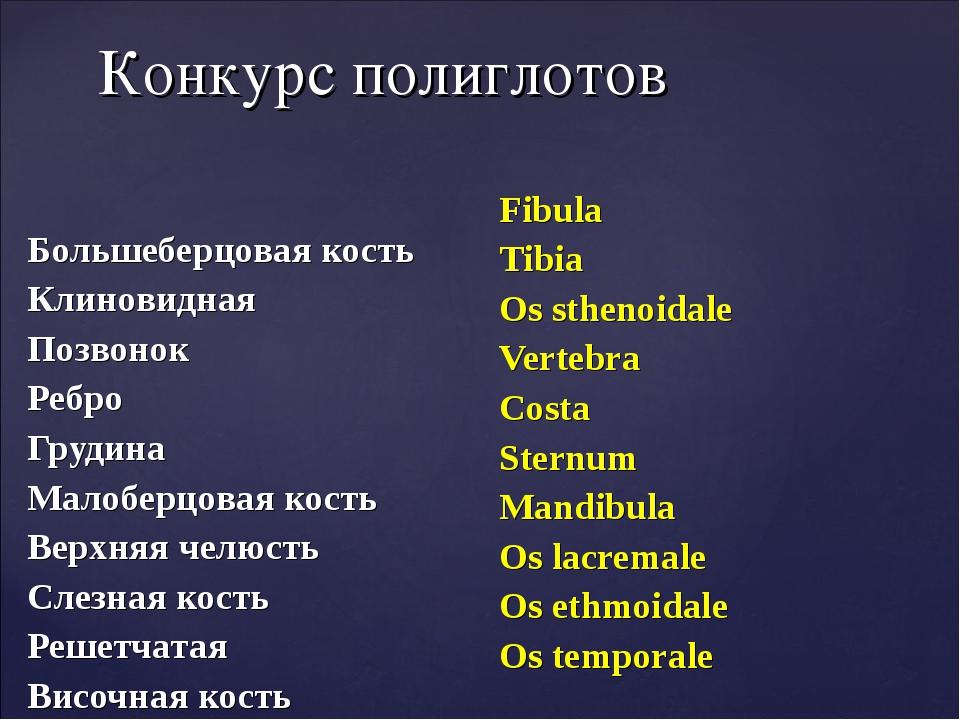 Конкурс полиглотов Большеберцовая кость Клиновидная Позвонок Ребро Грудина Ма...