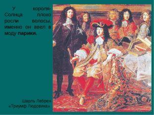 Шарль Лебрен «Триумф Людовика» У короля-Солнца плохо росли волосы, именно он