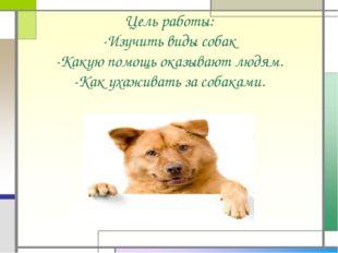 Цель работы: -Изучить виды собак -Какую помощь оказывают людям. -Как ухаживат