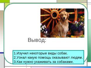 Вывод: 1.Изучил некоторые виды собак. 2.Узнал какую помощь оказывают людям. 3