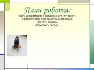 План работы: Найти информацию о собаках(книги, интернет); -Провести опрос сре